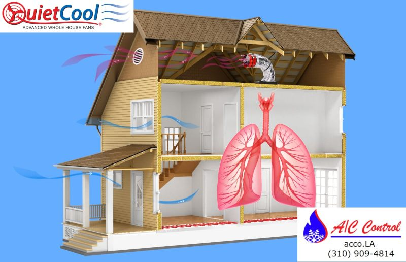 Cutout house with a graphic of the human lungs attempting to convey the effect of QuietCool products